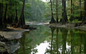 способы добычи воды в природных условиях