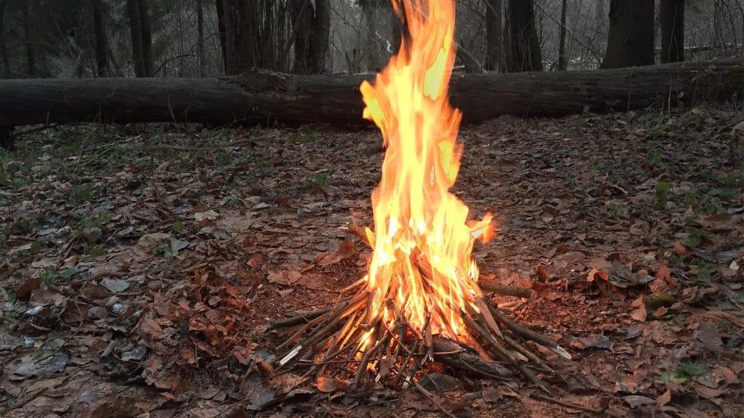 Правила разведения костра в лесу