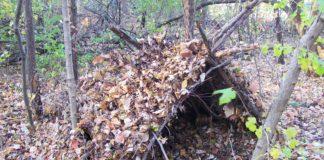 Строительство укрытия в лесу