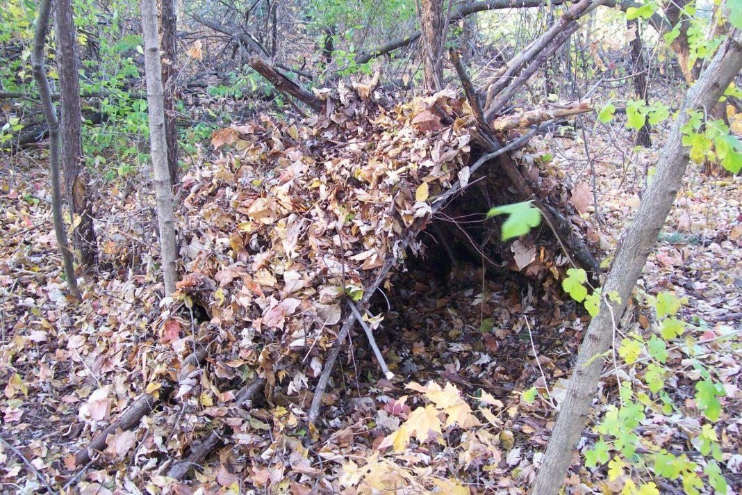 Как сделать палатку в лесу