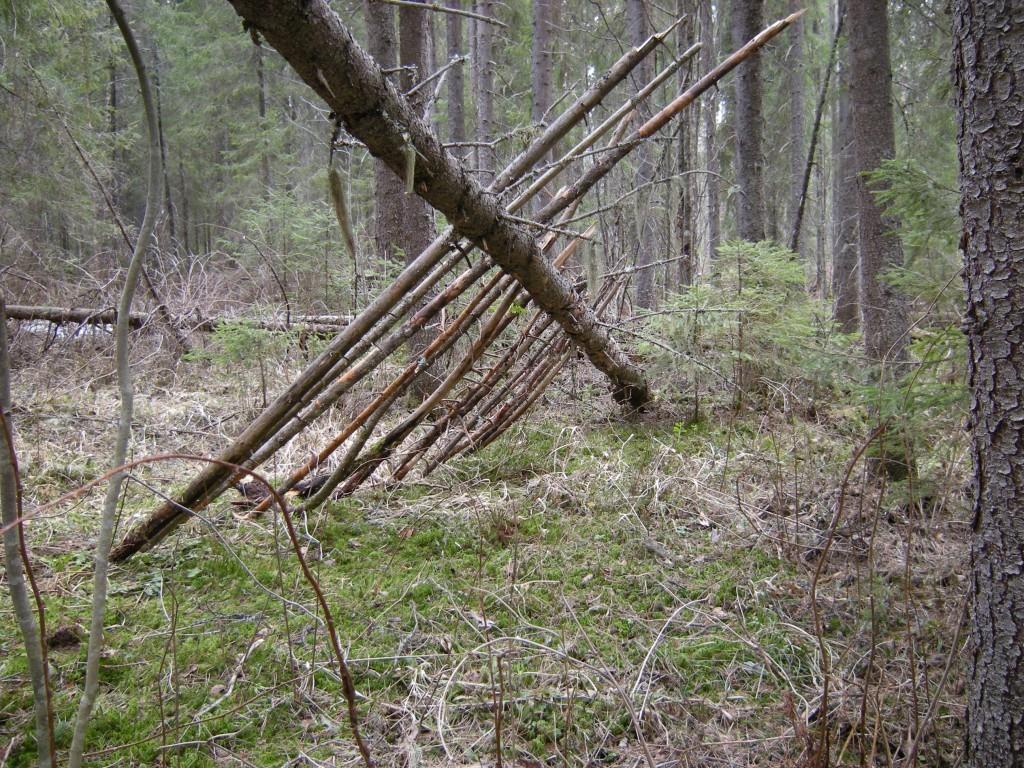 Укрытия в лесу своими руками 342