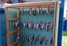Сушилка для рыбы, своими руками