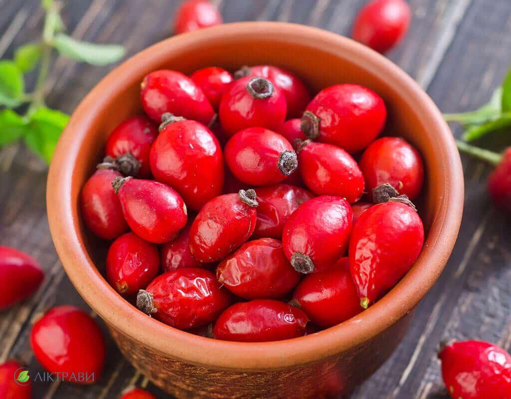 съедобные лесные ягоды фото
