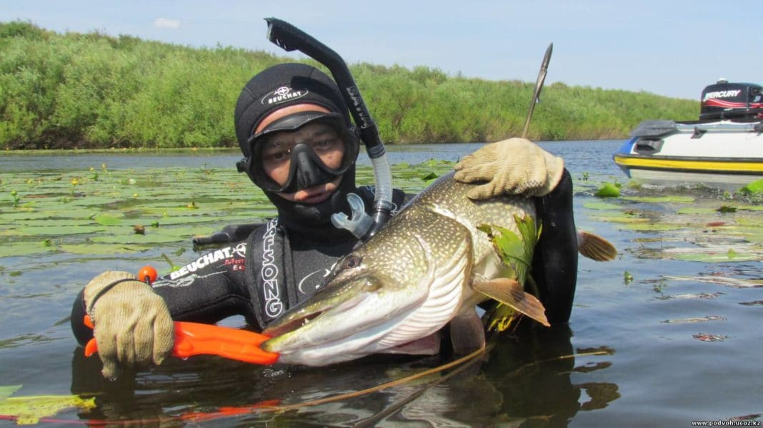 Рыбалка в Астрахани летом