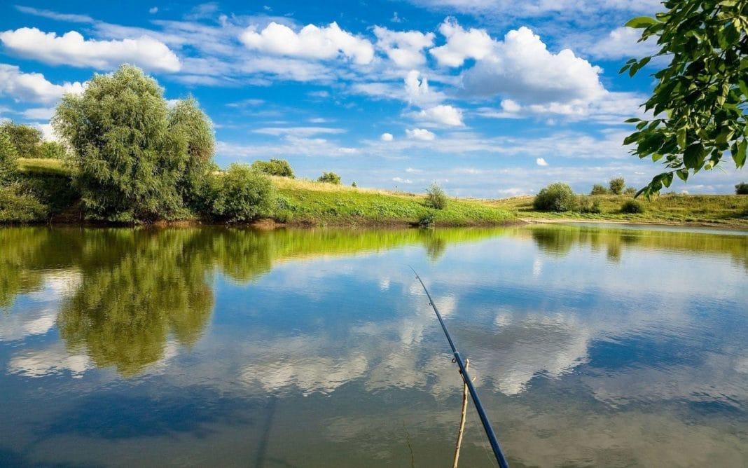 Рыболовные базы