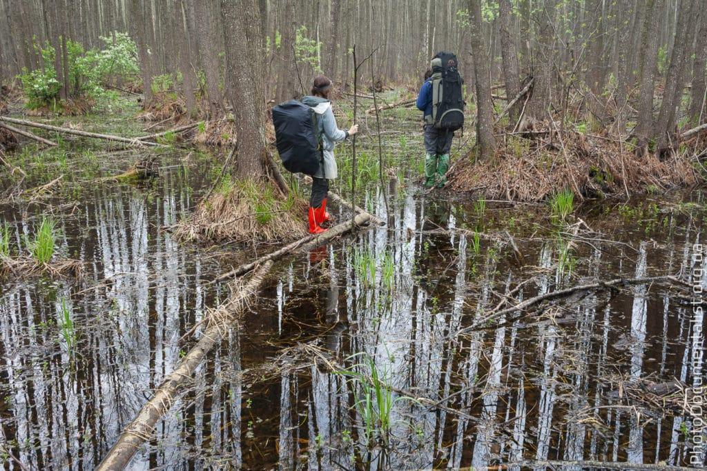 Для перехода через болото понадобится палка