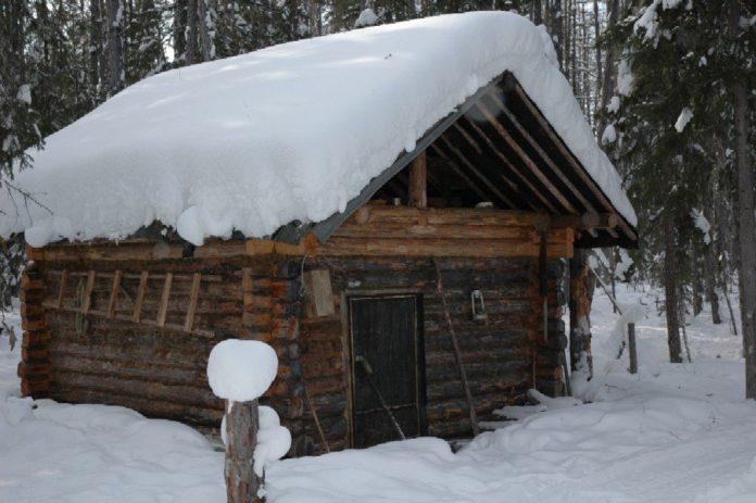 Zimove v tajge pr