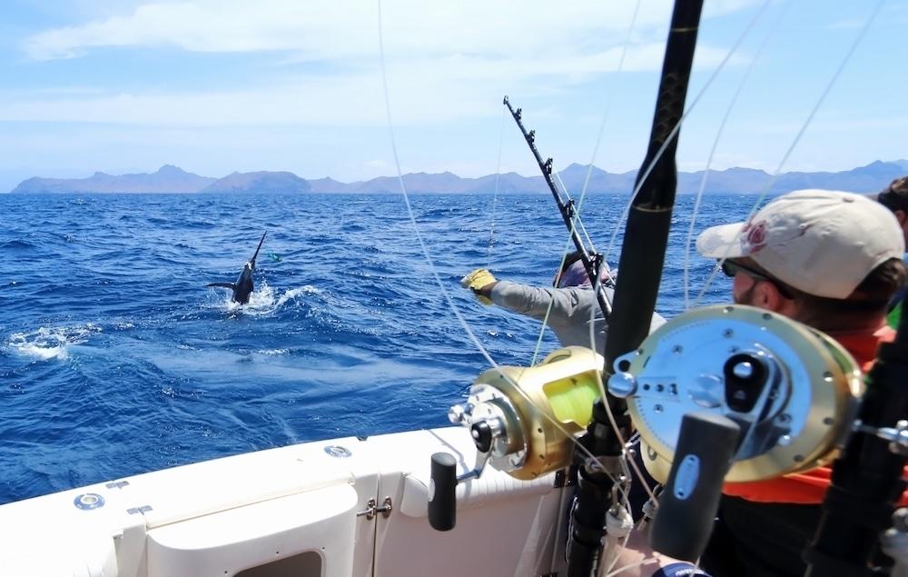 Картинки морская рыбалка