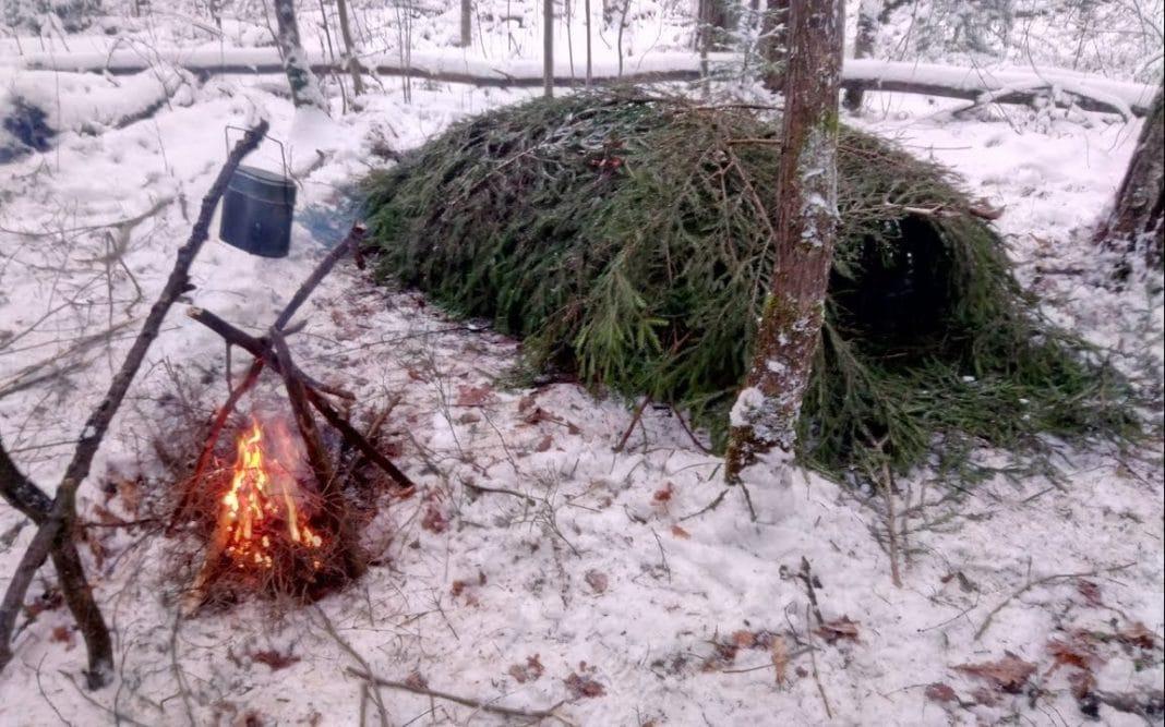 Выживание в тайге зимой