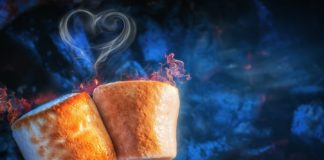 Идеальный десерт для пикника: зефир, поджаренный на костре