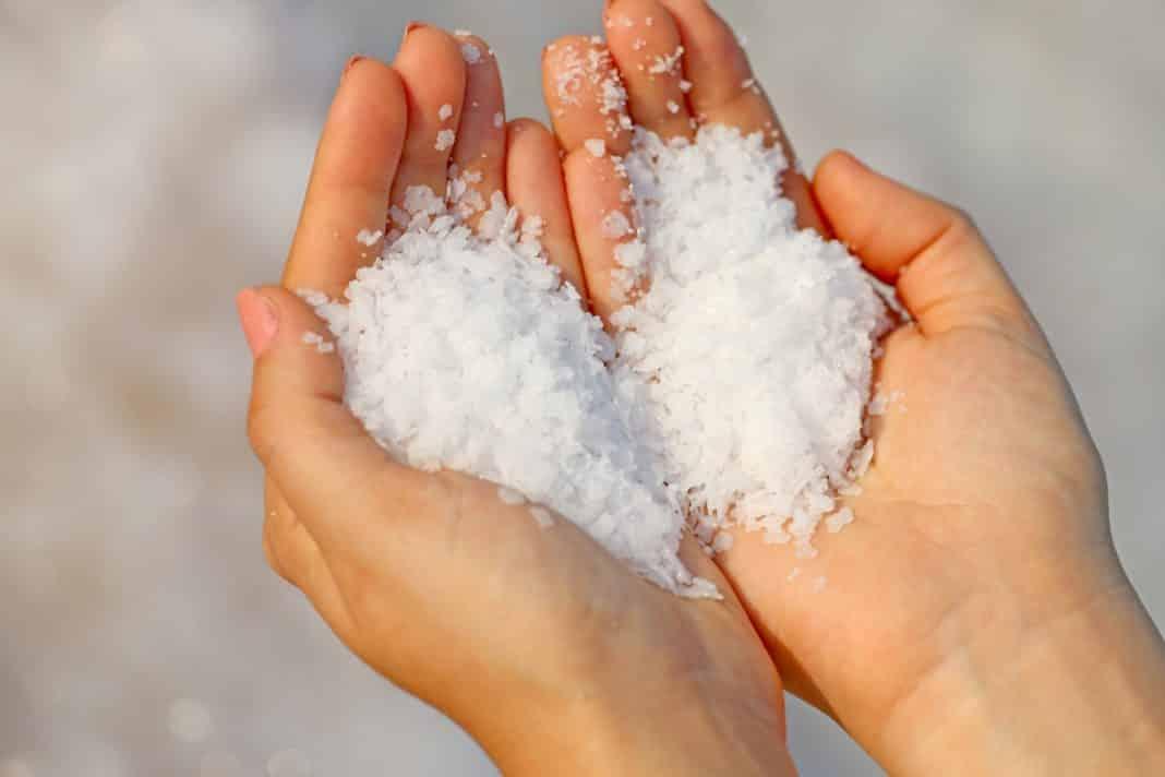 Тонны зарытой соли которые случайно можно найти в лесу, откуда они там?