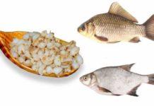 sposoby prigotovlenija perlovki dlja rybalki 9dbbd27